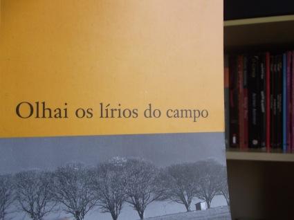 peguei lá do Ingrid Lemos pois não achei a capa do livro e achei essa fotinha linda <3